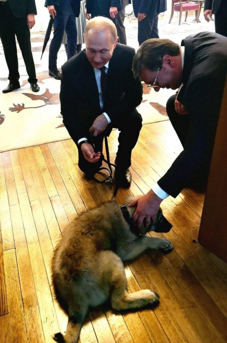 Vucic poklonio Putinu sarplaninca Pasu